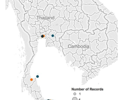 Thailand — August 2015 Update